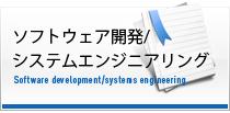 ソフトウェア・システム開発